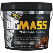 Bigjoy Sports BIGMASS Gainer GH FACTORS