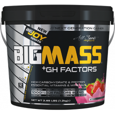 BIGMASS Gainer GH FACTORS